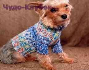 Голубой джемпер для собаки 75