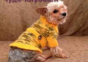 Желтое платье для собаки 78