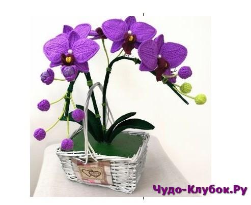 vyazanye orhidei2